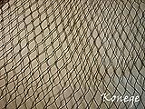Teichnetz 10