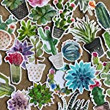 Super Cute Watercolor Cactus and Succulent Plants Stickers for Your Laptop, Water Bottle, and Scrapbook by Navy Peony (28 Pieces) (Color: Blue)