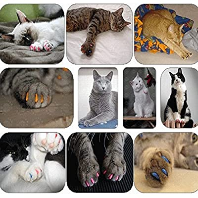 6 Size choices 100 pcs crystal blue Soft Cat Pet Nail Caps Claw Control Paws off + Adhesive Glue JOY-UK