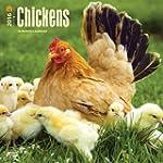 Chickens 2016 Square 12x12 Wall Calendar