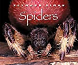 Spiders (0060283912) by Simon, Seymour