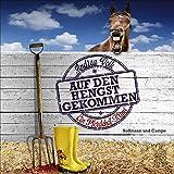 Andrea Volk 'Auf den Hengst gekommen: Ein Pferdehof-Krimi'