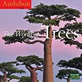 img - for Audubon The World of Trees Wall Calendar 2016 book / textbook / text book