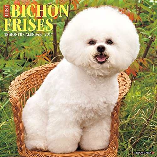 Just Bichons Frises 2017 Wall Calendar (Dog Breed Calendars)