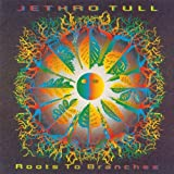 Roots to Branches By Jethro Tull (2006-09-25)