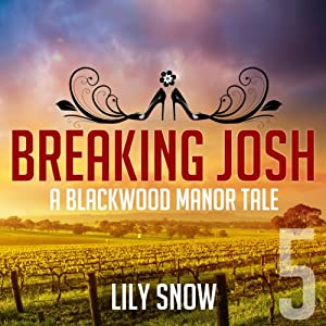 Breaking Josh 5 Audiobook