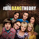 Image de The Big Bang Theory - Saison 8