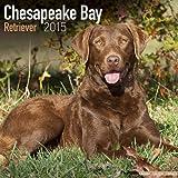 Chesapeake Bay Retriever Calendar - Only Dog Breed Chesapeake Bay Retriever Calendar - 2015 Wall calendars - Dog Calendars - Monthly Wall Calendar by Avonside