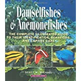 Damselfishes & Anemonefishes (Reef Fishes) ~ Scott W. Michael