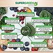 Super-Green-Juice-USDA-Organic-Superfood-Powder-Supplement-to-Alkalize-Detox-Energize-Strengthen-Immunity-44-Super-Foods-Probiotics-Prebiotics-Antioxidants-Fiber-Digestive-Enzymes-30-Day