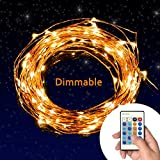 TaoTronics® Dimmable Led String Lights Copper Wire 33ft LED Starry Light with UL certified 5v Power Adapter For Christmas Wedding and Party, suitable for indoors or outdoors