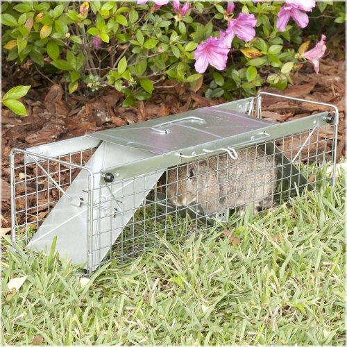 Havahart 1030 Live Animal Two Door Rabbit Squirrel Skunk