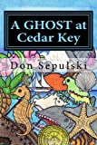 A Ghost At Cedar Key