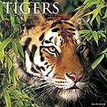 Tigers 2016 Calendar