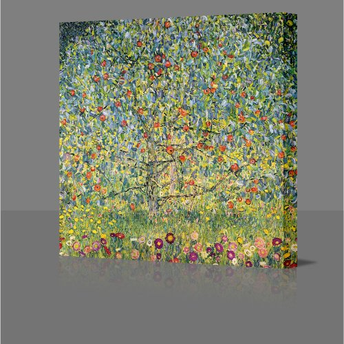 GUSTAV KLIMT Apple Tree In Blossom Gallery Framed Canvas Art Poster Print Ready To Hang NEW Framed Over Deep Stretcher Bars