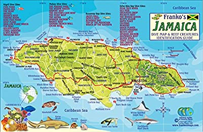 Jamaica Dive Map & Coral Reef Creatures Guide Franko Maps Laminated Fish Card