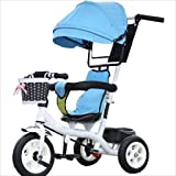 Strollers DD Child Indoor Outdoor Small Tricycle Bicycle Boy's Bike Girl's Bike for 6 Months-6 Years Old Baby Three Wheels Trolley Awning,Rubber Wheel (Color : 2) (Color: 2)