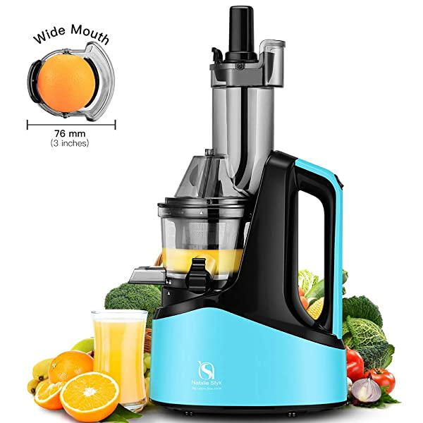 Natalie Styx Wide Chute Anti Oxidation Slow Masticating Juicer For