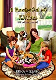 img - for A Basketful of Kittens: Bff Adventures #1 book / textbook / text book