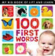 My Big Book of Lift and Learn: 100 First Words