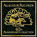 Alligator-records-:-40th-anniversary-collection