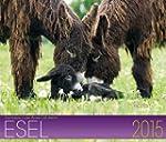 Esel Kalender 2015: Geliebte Esel