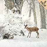 Beautiful Luxury Artist Christmas Cards - Woodland Creatures (5 Pack)