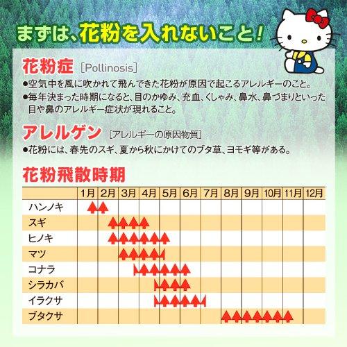 ハローキティ 花粉対策メガネ【スカッシースマート】 (レギュラーサイズ) レッド