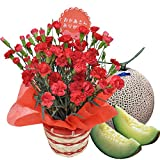 ほんまもん屋 母の日 ギフト カーネーション 鉢植え 5号鉢 レッド と つる付き アールス メロン セット