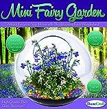 Dunecraft Mini Fairy Garden Science Kit