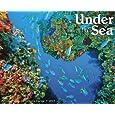 Under the Sea Calendars