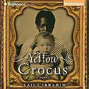 Yellow Crocus | [Laila Ibrahim]