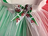St David's Day Welsh Dragon Tutu Green Red White Wales Rugby All Sizes 12