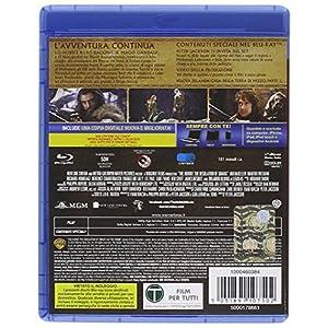 Lo Hobbit - La desolazione di Smaug [Blu-ray] [Import italien]