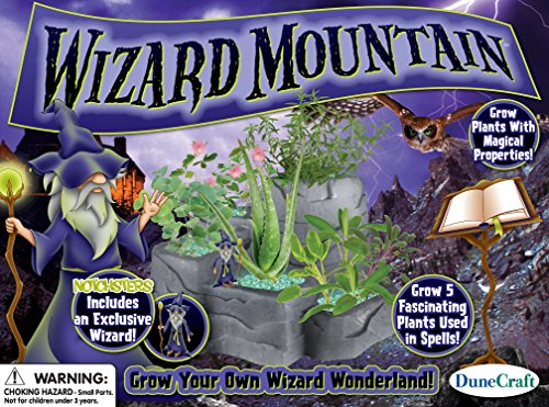 Dunecraft Wizard Mountain Domed Terrarium - 1