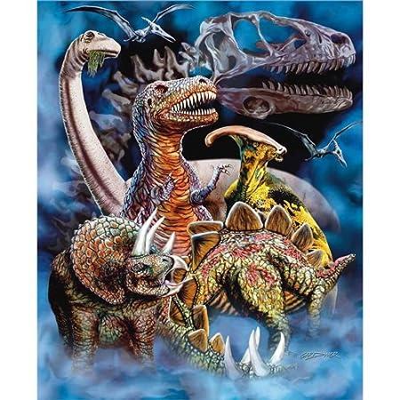 Dinosaurs Mink Blanket