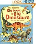 Big Book of Dinosaurs (Usborne Big Bo...