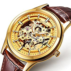 PASOY Men's Automatic Mechanical Watch Sapphire Glass Luminous Hands Gold Steel Leather Skeleton Watches