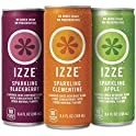 24-Pack Izze Sparkling Juice Variety Pack