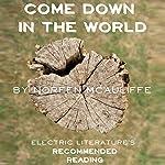 Come Down in the World   Noreen McAuliffe,Julia Fierro - foreword