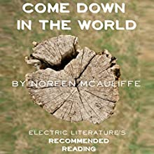 Come Down in the World (       UNABRIDGED) by Noreen McAuliffe, Julia Fierro - foreword Narrated by Peter Berkrot
