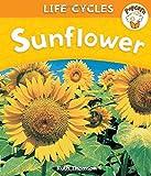 Sunflower (Popcorn: Life Cycles)