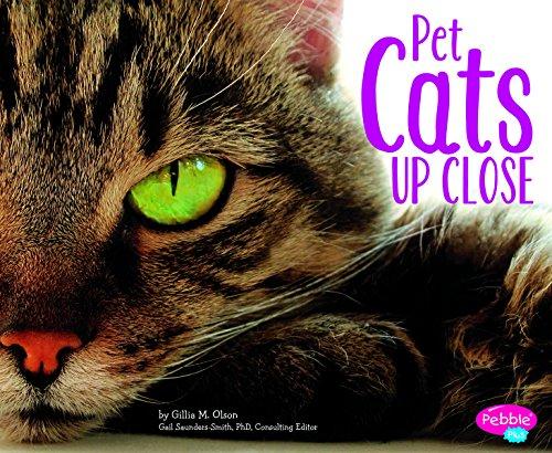 Pet Cats Up Close (Pets Up Close)