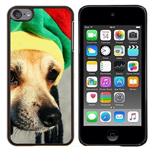 Rasta Mütze Dog Chihuahua Muzzle Schnauze - Aluminum & Hartplastik Telefonkasten - Schwarz - iPod Touch 6