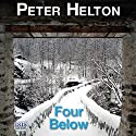 Four Below: A Detective Inspector McLusky Investigation, Book 2 Audiobook by Peter Helton Narrated by David Thorpe