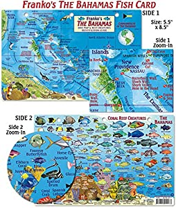 Franko Maps Bahamas Fish ID for Scuba Divers and Snorkelers