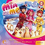 Die Reise zum eisigen Nordhorn (Mia and Me 23)