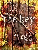 The Key: A Short Prelude to Ladybird Ladybird