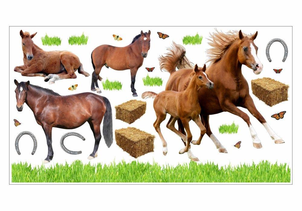 003 Wandtattoo Pferd mit Fohlen Pony reiten Gras Wiese Hufeisen Heu Sticker (750 x 420 mm) günstig online kaufen