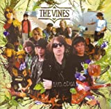 The Vines Melodia